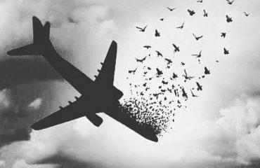 سقوط هواپیمای آسمان و جان باختن همه ی سرنشینان